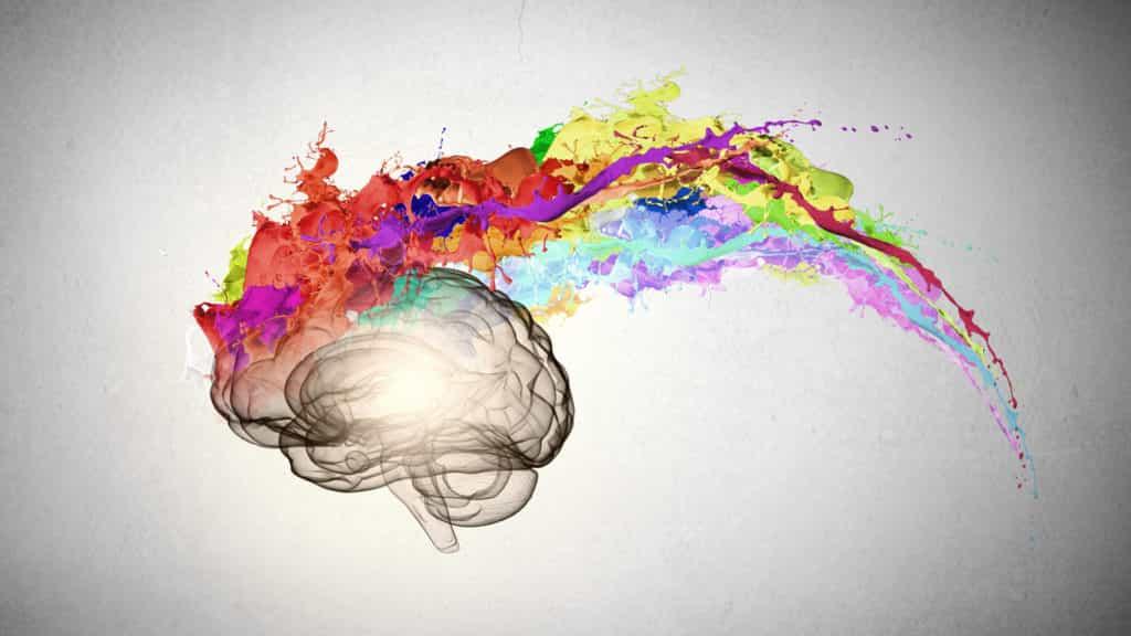 infografia cerebro