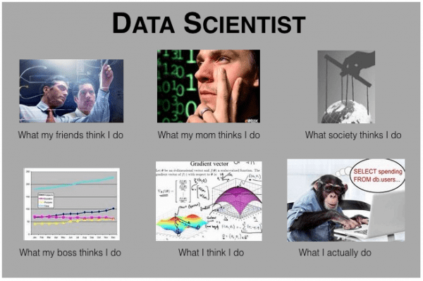 meme sobre Data Scientist